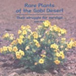 RARE PLANTS OF THE GOBI DESERT by John Hare (paperback)