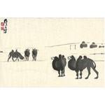 BACTRIAN CAMEL PRINT by Wu Zuoren