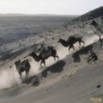 Descending dunes