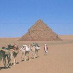 1 - Trans-Saharan Trek