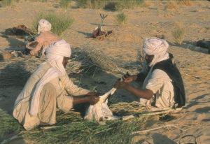 2 - Trans-Saharan Trek