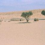 3 - Trans-Saharan Trek
