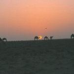 4 - Trans-Saharan Trek