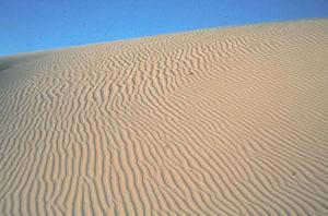 7 - Trans-Saharan Trek