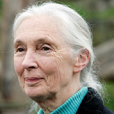 Dr Jane Goodall DBE