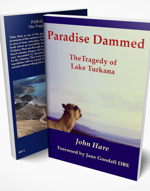 Paradise Dammed by John Hare
